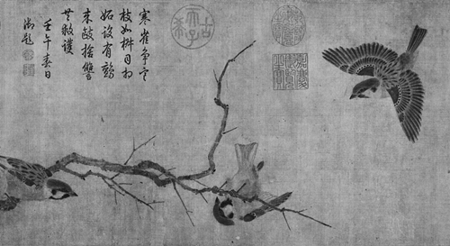 黑白-鸟3_副本_副本