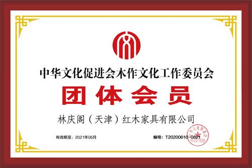 林庆阁-团体会员500